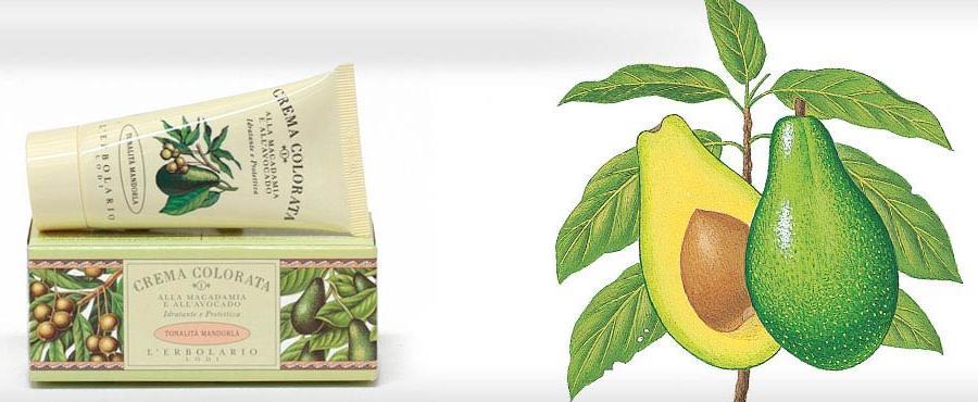 crema-colorata-avocado-mandorla